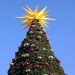 1246521_christmas_tree