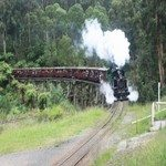 1261461_puffing_billy