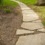 1278407_where_the_path_goes