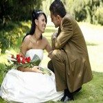 979435_wedding_colection