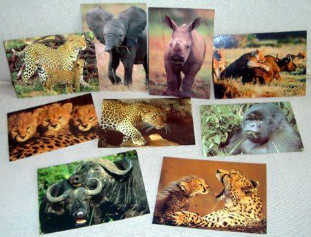 sandra_postcards