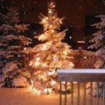 31676_christmas_tree