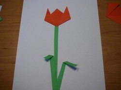Tvorenicko_tulipan-motyl[4]