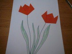 Tvorenicko_tulipan-motyl[5]