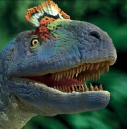 svet_dinosauru5