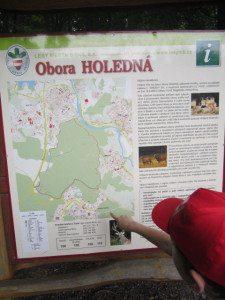 holedna_1