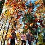 kids-playing-with-leaves-1-1349785