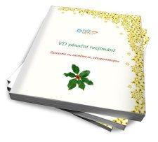 VD_vanocni_rozjimani_cover550