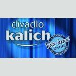 Divadlo Kalich logo 16 let ctverec