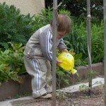 zahradnice2