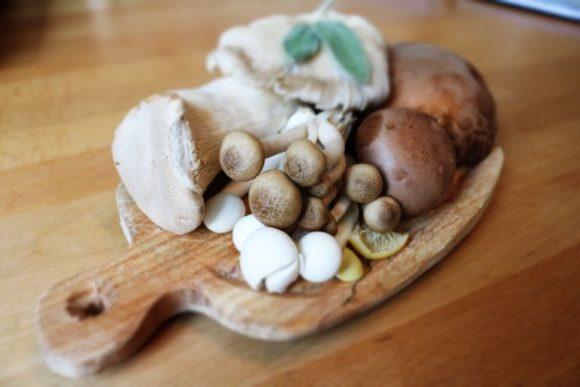 houby betaglukany